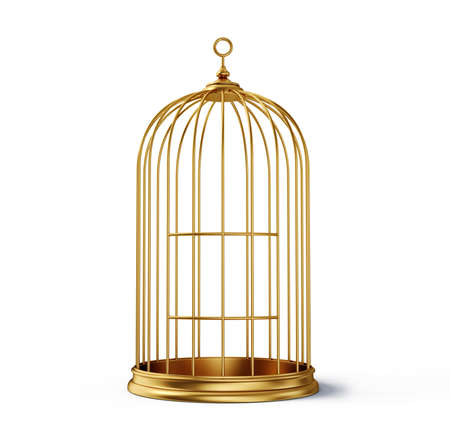 gold cage isolated on a white background