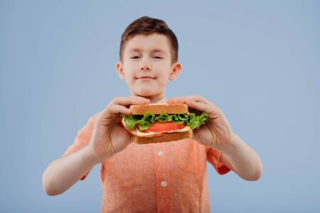 child with sandwich in hand. boy looks at the camera, Imagens