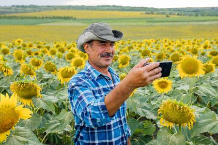 Senior farmer leads a vlog in the sunflower field, modern farmer using social media for marketing