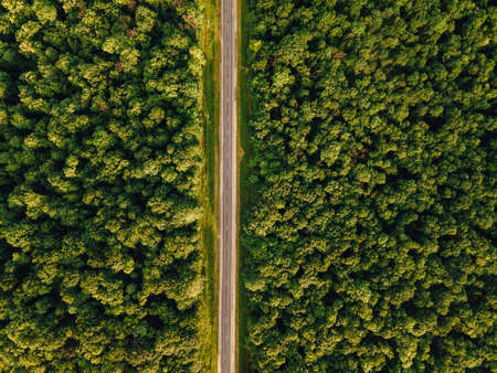 Aerial view of over forest land perfect asphalt highway road and meadow at sunny summer morning. Near green trees. Drone view. Forest sunset aerial view scene.