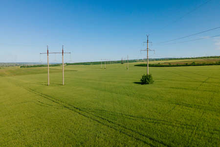 aerial view of High voltage electric towers and Flying over a field of wheat. Modern agriculture. Drone flying over green wheat field in spring. Transmission power line.