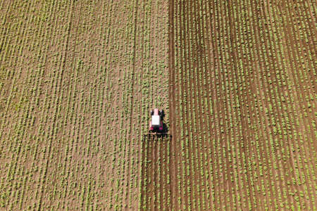 aerial view of following a tractor working in the field, processing the agricultural land. field work with agricultural technology