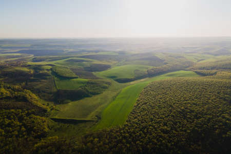 Aerial view over agricultural land and green forest in sunny summer evening. Crop fields and green forest at sunset. Cinematic drone shot Stock Photo