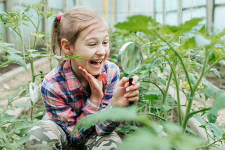 Cute amazing adorable Caucasian girl looking at plants grass in greenhouse through magnifying glass. Healthy eye sight, discovery games, fun botanical activities.