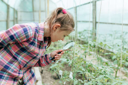 Image of smiling kid with magnifying glass exploring the nature outdoors. Cute caucasian little child girl looking through a magnifying glass the plant