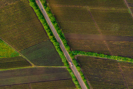 winding country road in the field. Aerial view of a field with a asphalt road. Faming life scenery. Colorful agriculture fields landscape. Stock Photo