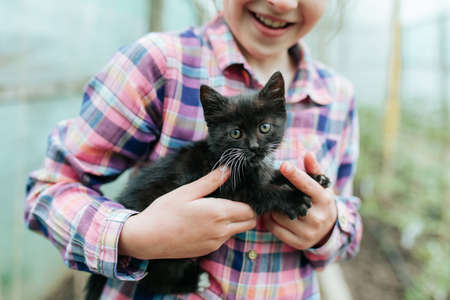 close up of Happy kid playing with black kitty cat. Kids and pets. small and beautiful kitten