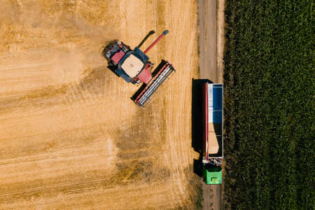 Aerial shot of combine loading off wheat grains into truck trailer. from above. 4K footage in a wheat field while harvesting the crop in USA.