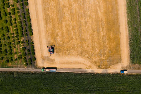 top view drone flight over a wheat field with a combine harvesting wheat and a truck waiting to be loaded with wheat grains