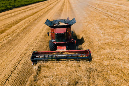 drone shot over Combine working on wheat fields during harvesting. Combine harvester at work harvesting field wheat. Agriculture in European Union from above