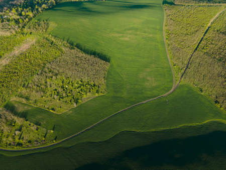 aerial view of the rural landscape with green fields and forests at sunrise. drone flight over agricultural land and green forests. beautiful summer piece.