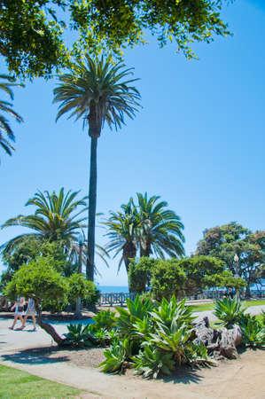 Exotic park in Santa Monica photo