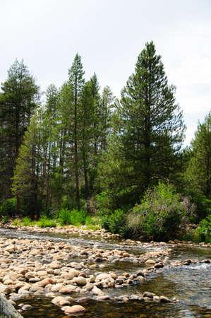 South fork San Soaquin river California photo