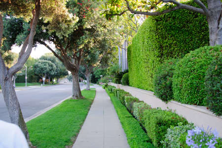 country house style: Sidewalk on beverly hillls in California USA
