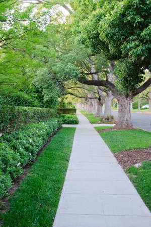 frontyard: Sidewalk on beverly hillls in California USA