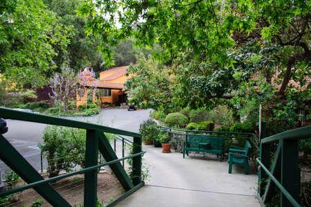 Green summer backyard garden with grass and passway