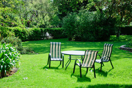 Green summer backyard garden with grass, table and chairs