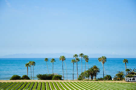 Amazing view by the ocean in sunny California Banque d'images