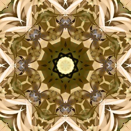 symmetrical: Symmetrical decorative patterns, 3D illustration multicolored.