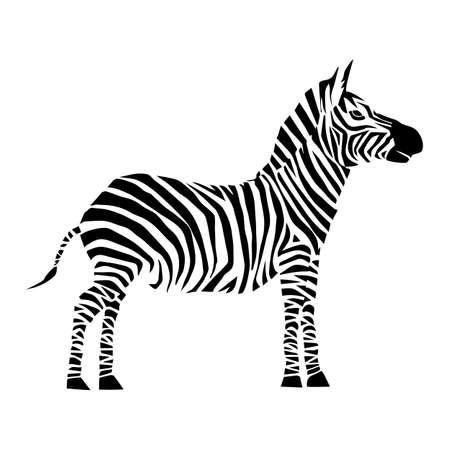 Tiervektorillustration. Wildes afrikanisches Zebra. Schönheitsnatur im Vektordesign. Gut für Markenlogo, Wallpers, Hintergrund, Zoo-Anzeigen. Einfache und trendige flache Silhouettengrafik. Von Natur eingestellt.