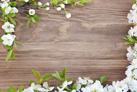 aromas: Frame of spring flowers on a wooden background.
