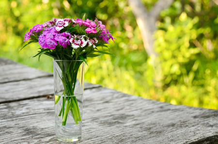 coloured background: Bouquet of small carnations on a table in the garden