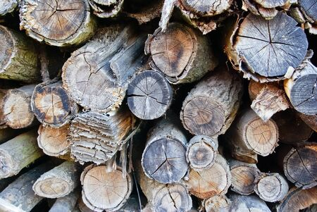 """""""The logs and wood products,which were folded on a bunch of"""""""