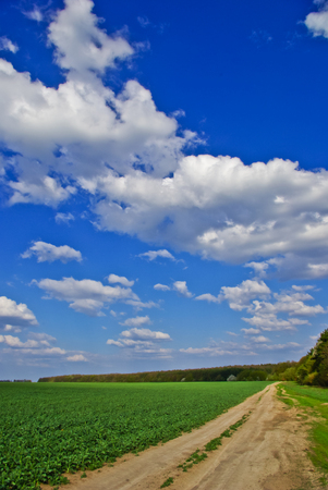 Green field,road,forest,on the background of the blue sky with clouds