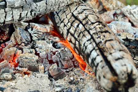 charred: Charred wood burning down in the fire glow, close-up Stock Photo