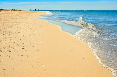Sea waves washed clean beach made of shells. Landscape on a wild beach. The sea in the summer. Stock Photo
