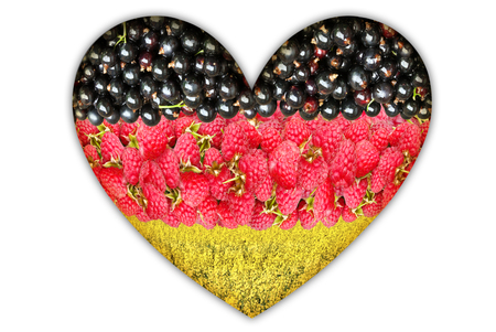 Flag of Germany from the berries on a white background. Stock Photo