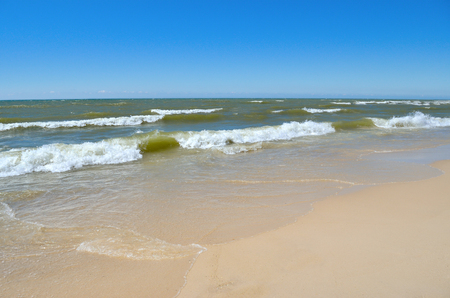 Sea waves wash the clean sandy beach. Landscape on a wild beach. The sea in the summer.
