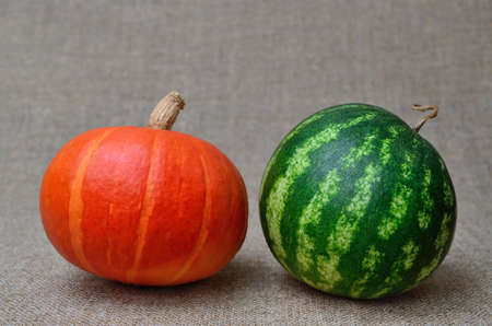 Ripe watermelon and pumpkin on a coarse burlap 免版税图像