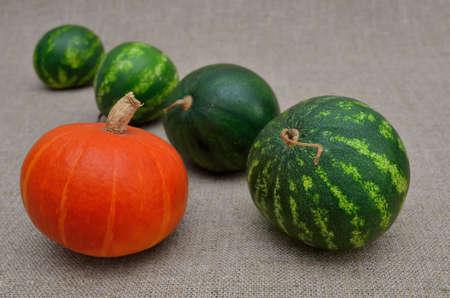 Ripe watermelons and pumpkin on a coarse burlap Stock fotó