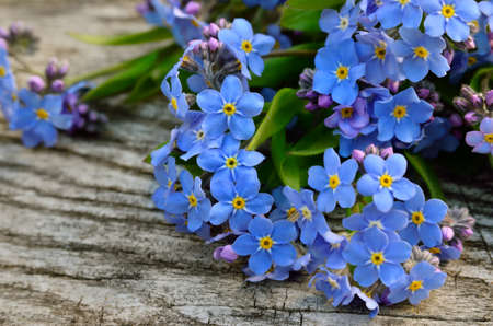 Bouquet of blue forget-me on a wooden background 免版税图像 - 159932593