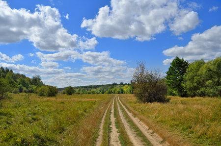 Path on a green meadow against a blue sky 免版税图像 - 161958174