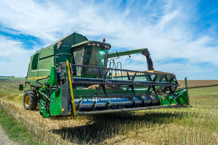 process of  canola harvesting by harvesters. plants in reapers. truck unloading. Publikacyjne