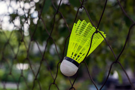 shuttlecock with a white tip and a light green shank on the gaming, fenced net, site.