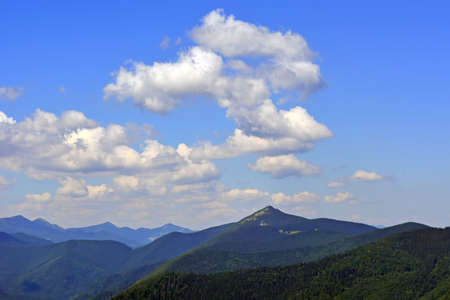 landscapes of mountains covered with dense coniferous forest, against a blue sky with clouds. Banco de Imagens