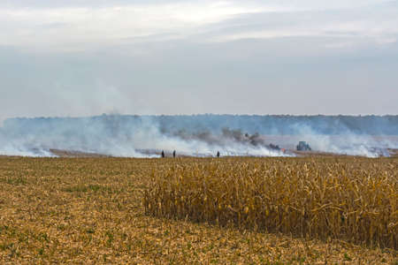 farmer arson post-harvest remains of corn, which resulted in the killing of microorganisms, as well as small animals and smoke, discharging heavy metals into the atmosphere. Stock Photo