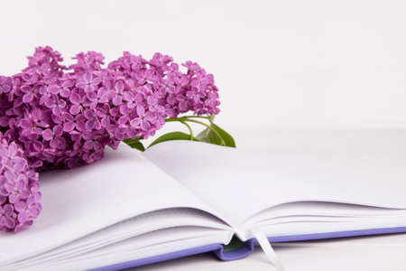 Bouquet of lilac with open notebook on white background.