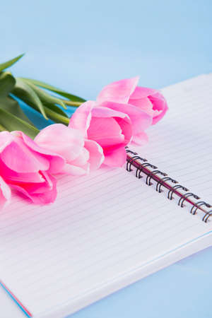 Bouquet of tender pink tulips with open notebook on blue wooden background.