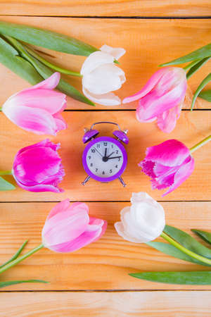 Bouquet of tender pink tulips with purple little clock on light wooden background