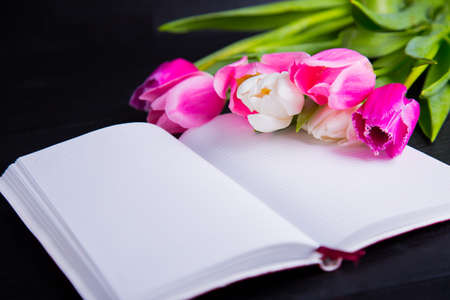 Beautiful bouquet of tender pink and white tulips and open notebook on black wood Stock Photo