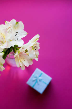 Beautiful tender bouquet of white Alstroemeria with blue gift box on crimson background. Spring composition. Springtime. Mother`s day card. Stock Photo