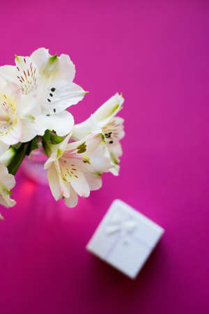 Beautiful tender bouquet of white Alstroemeria with white gift box on crimson background. Spring composition. Springtime. Mother`s day card.