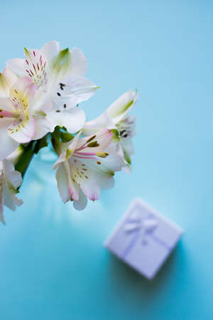 Beautiful tender bouquet of white Alstroemeria with white gift box on mint background. Spring composition. Springtime. Mother`s day card. Stock Photo