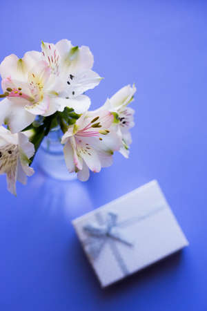 Beautiful tender bouquet of white Alstroemeria with white gift box on blue background. Spring composition. Springtime. Mother`s day card.