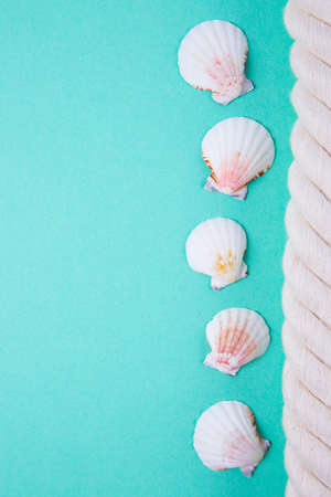 Sea rope and scallop shells on colored mint green background with negative space. Minimalistic colorful summer background. Top view. Flat lay in marine style. Stock Photo