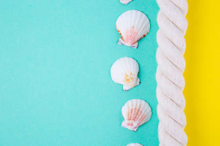 Sea rope and scallop shells on colored yellow and mint green backgrounds with negative space. Minimalistic colorful summer background. Top view. Flat lay in marine style.